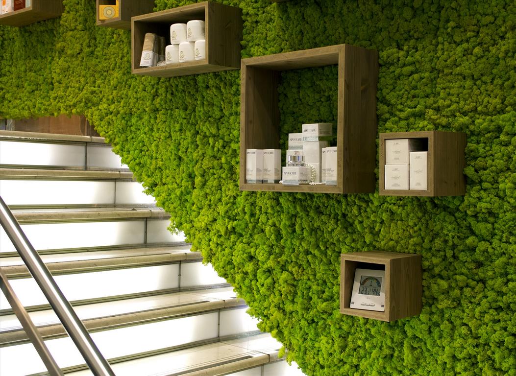 Идеи бизнеса по лесу бизнес планы консалтинговой фирмы