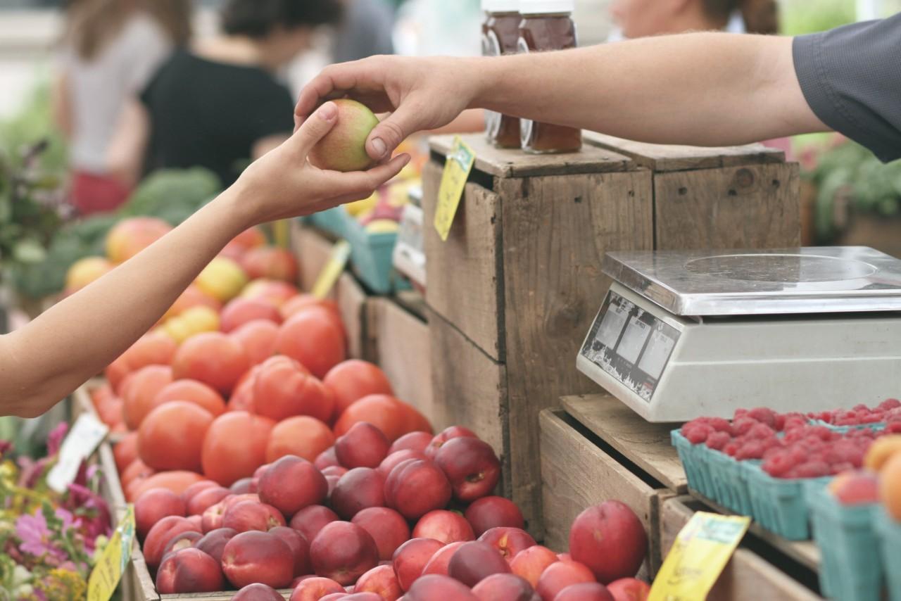 Первый фермерский рынок появится в Новосибирской области